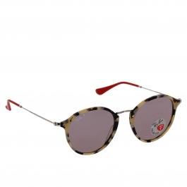 Glasses Ray-ban RB2447