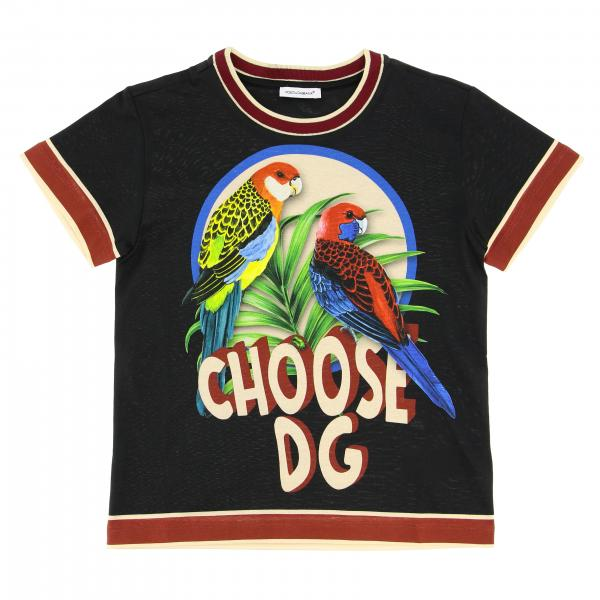 Dolce & Gabbana short-sleeved T-shirt with logo and parrots