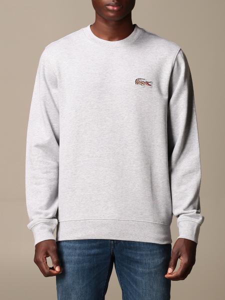 Lacoste: Sweatshirt herren Lacoste