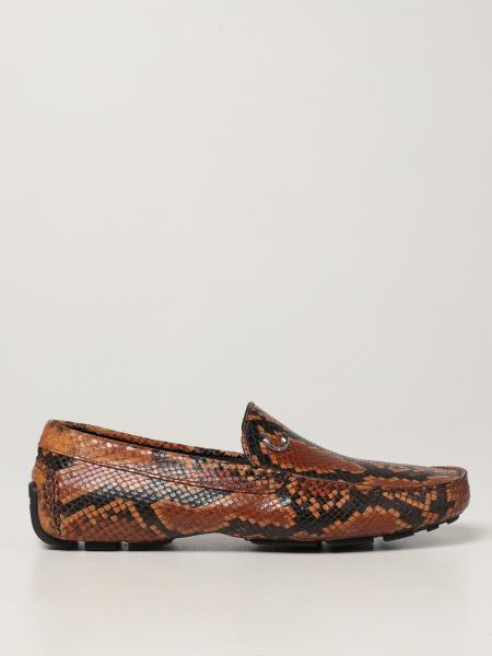 Just Cavalli: Обувь Мужское Just Cavalli