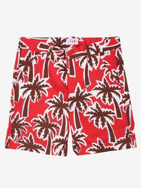 Short Il Gufo à motif palmier