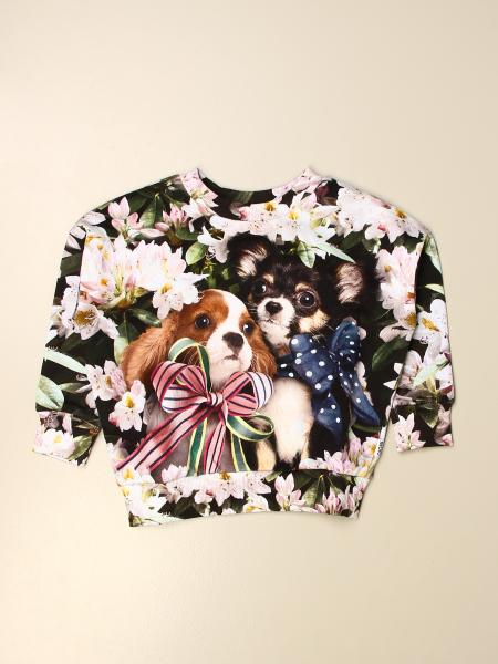 Molo crewneck sweater in patterned cotton with dog print