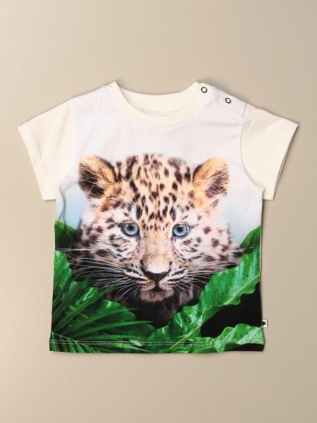 Molo t-shirt in cotton with print
