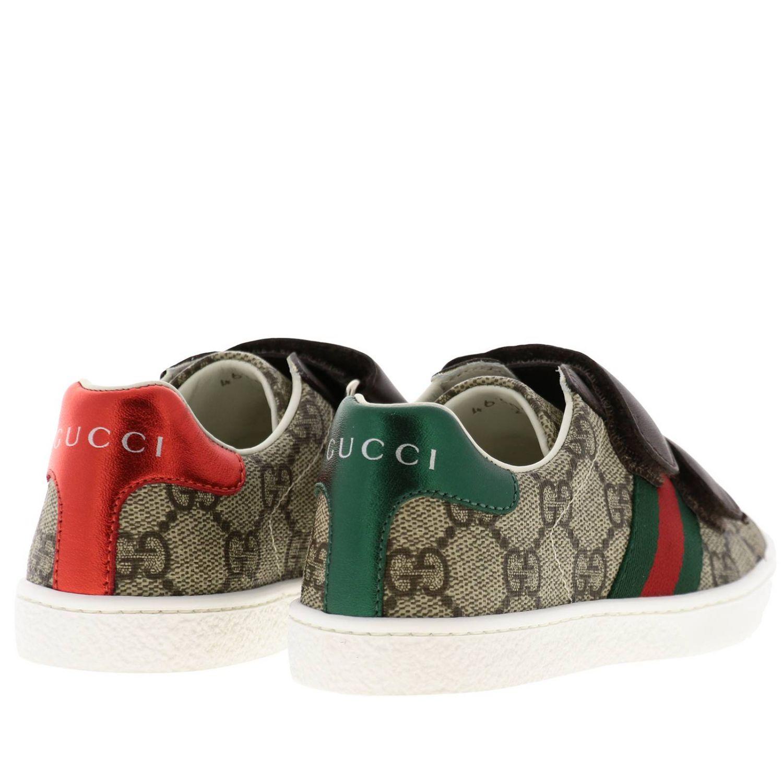 Sneakers Ace Gucci GG Supreme con fasce Web e doppie fibbie beige 4