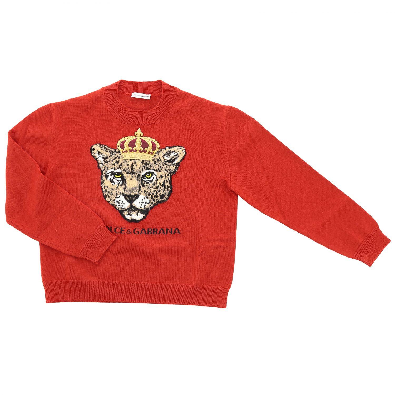 Свитер Dolce & Gabbana: Свитер Dolce & Gabbana с круглым вырезом и леопардом красный 1