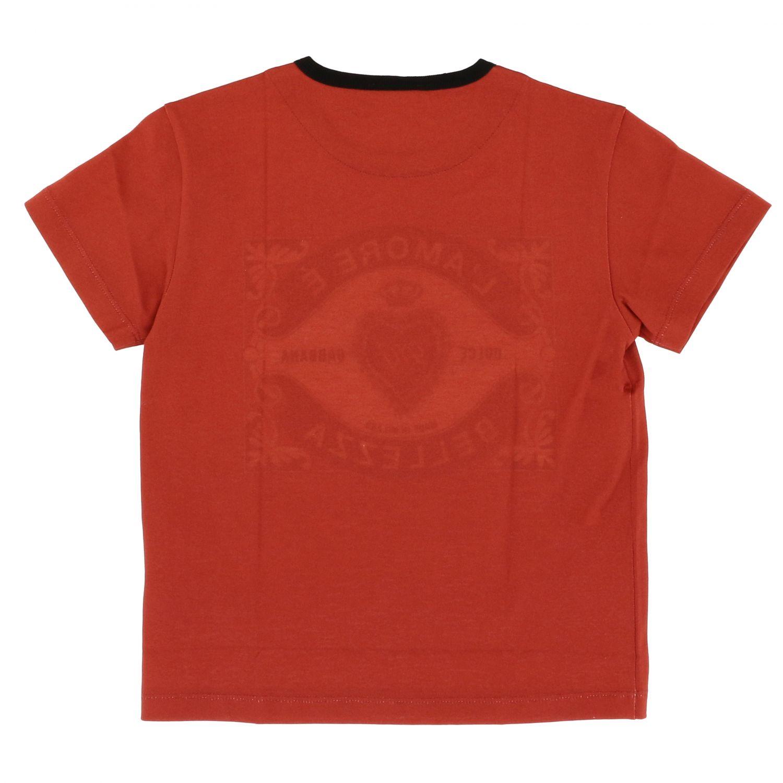 T-shirt Dolce & Gabbana: T-shirt Dolce & Gabbana a maniche corte con logo l'amore è bellezza rosso 2