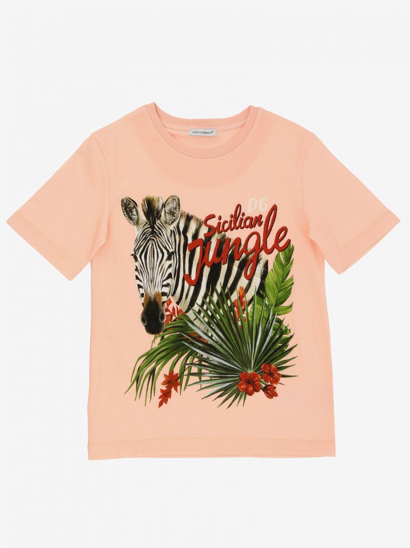 T-shirt Dolce & Gabbana: T-shirt Dolce & Gabbana con stampa zebra rosa 1