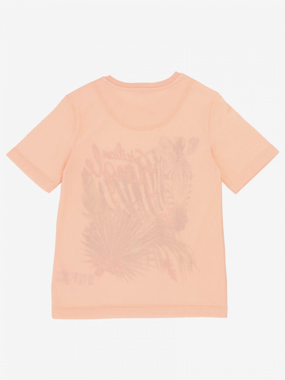 T-shirt Dolce & Gabbana: T-shirt Dolce & Gabbana con stampa zebra rosa 2
