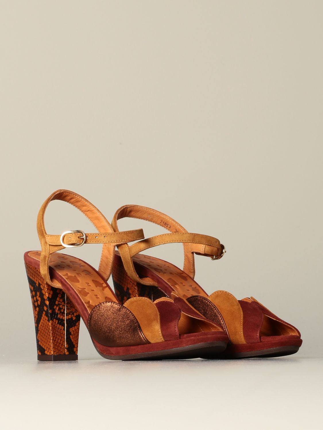 Shoes women Chie Mihara earth 2