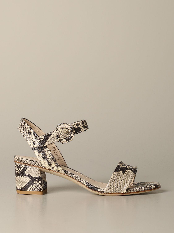 鞋 女士 Tod's 彩色 1