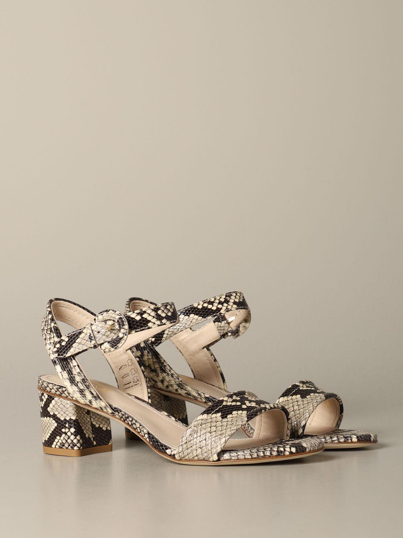鞋 女士 Tod's 彩色 2