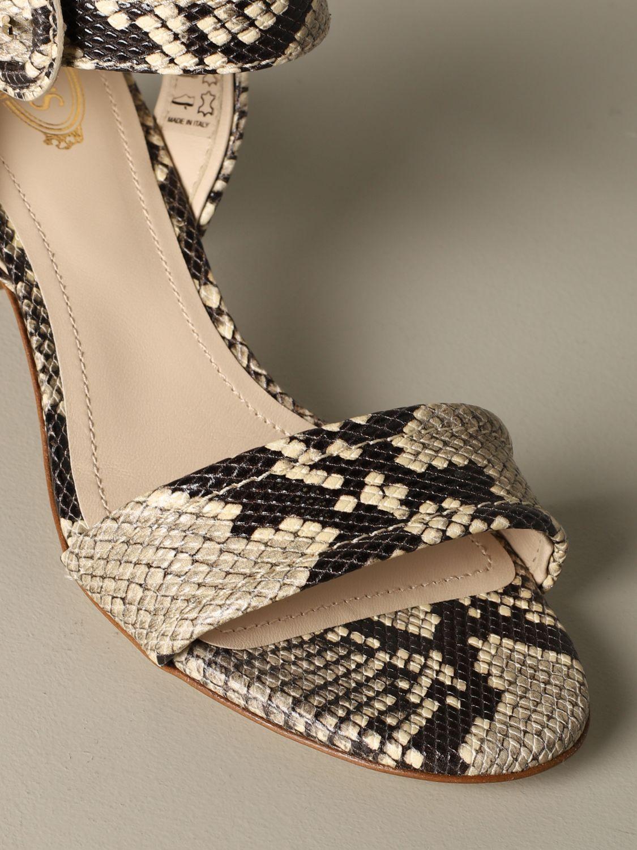 鞋 女士 Tod's 彩色 3