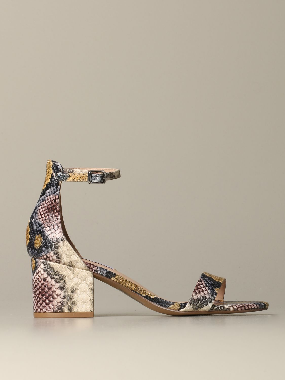 鞋 女士 Steve Madden 彩色 1