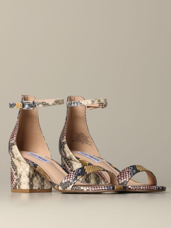 鞋 女士 Steve Madden 彩色 2