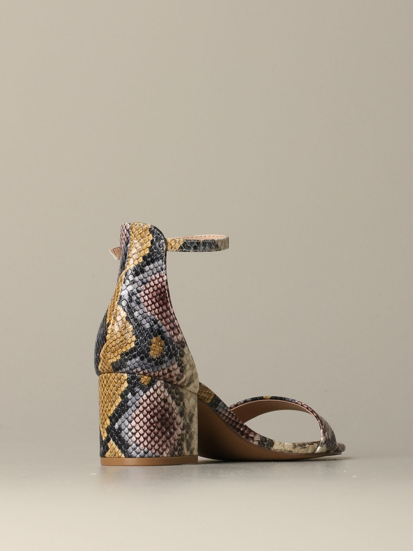 鞋 女士 Steve Madden 彩色 3