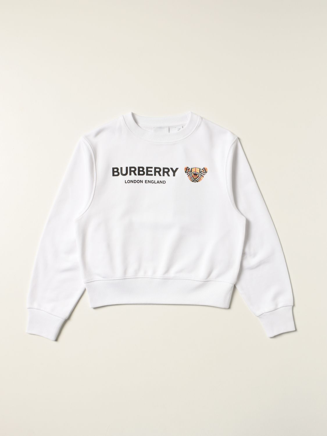 Jumper Burberry: Burberry cotton jumper with Thomas bear white 1